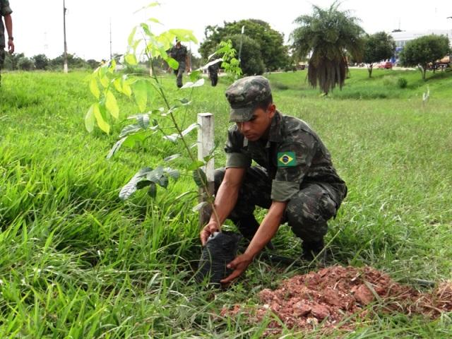 Resultado de imagem para forças armadas meio ambiente
