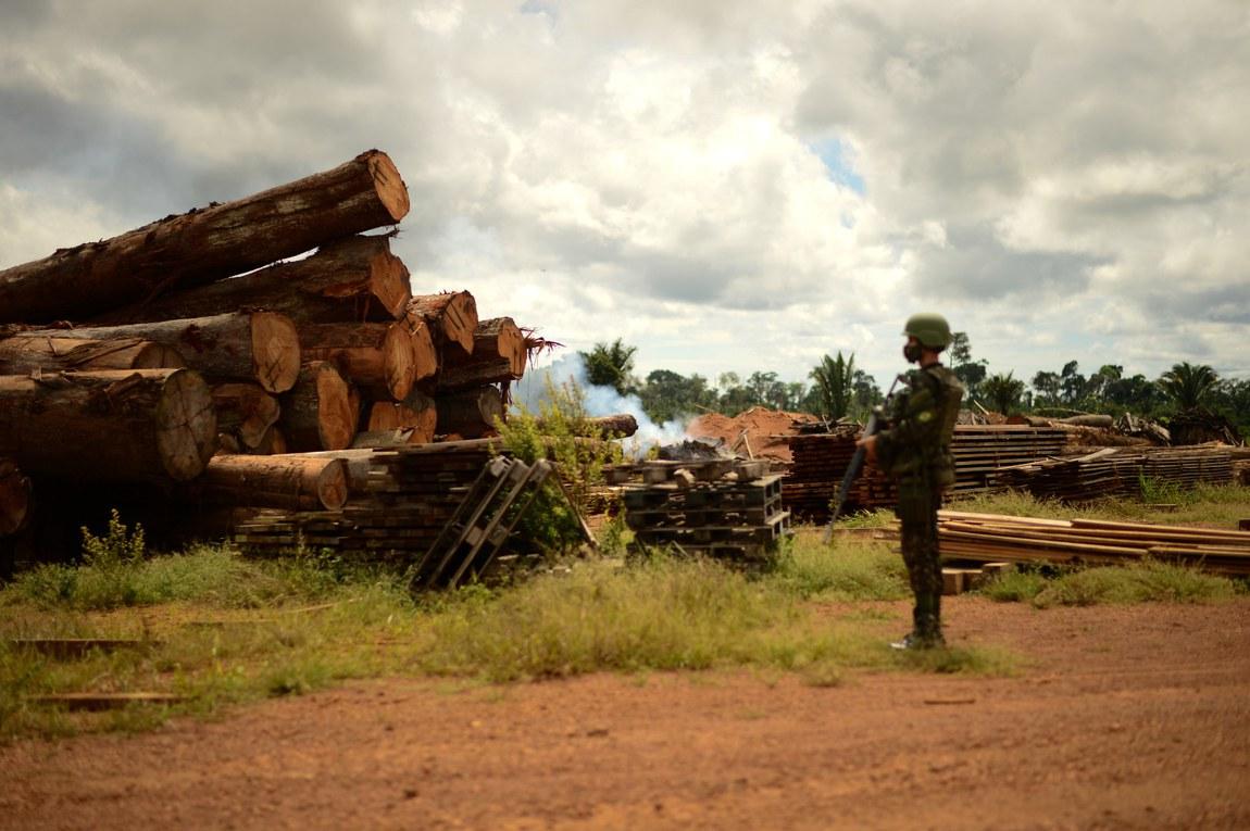 Verde Brasil 2 completa 210 dias com queda no desmatamento e aprovação da opinião pública